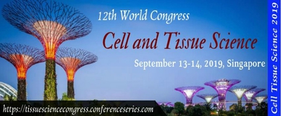 12th World Congress On Cell And Tissue Science