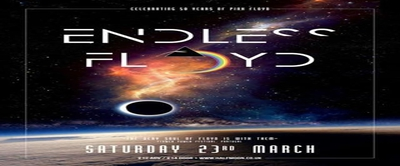 Endless Floyd: Pink Floyd Tribute Band Live at Half Moon Put
