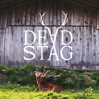 Live Gig by Dead Stag